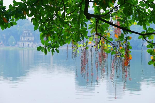 hanoi in its most beautiful days - vietnam visa apply online