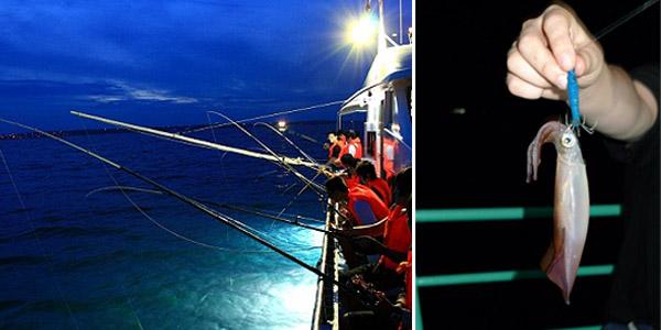 Squid fishing in Halong Bay - Online Vietnam visa service