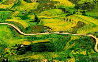 Y Ty Village in Northern Vietnam