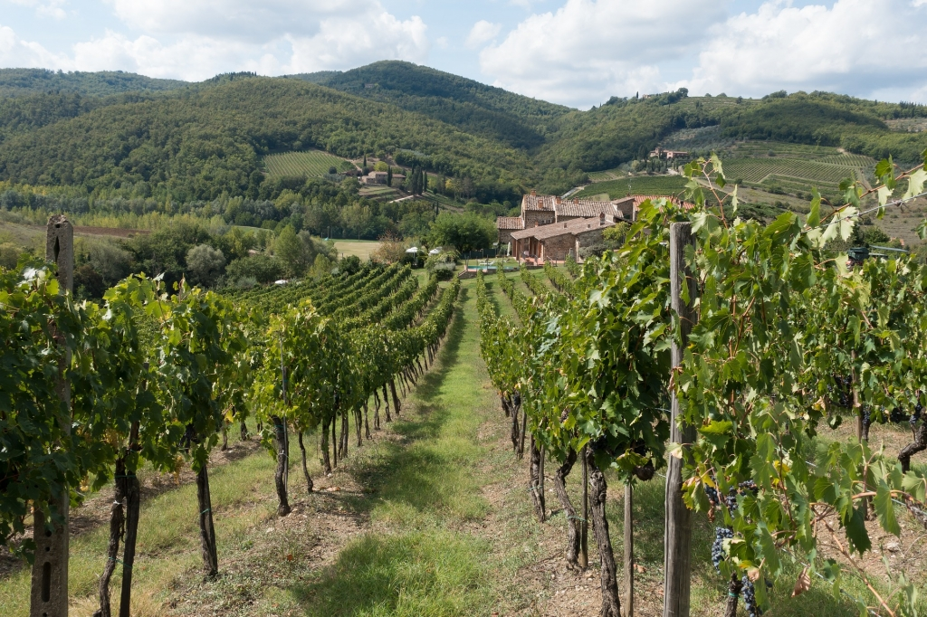 Hills of Tuscany, wine country - Vietnam visa online