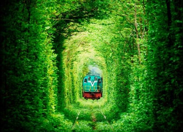 famous Tunnel of Love in Ukraine - Vietnam visa online portal