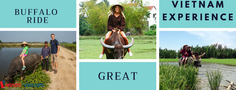 Rid a buffalo - a great experience for US travelers to Vietnam - Vietnam visa