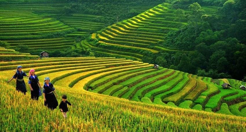 沙巴-越南北部美麗的山區小鎮