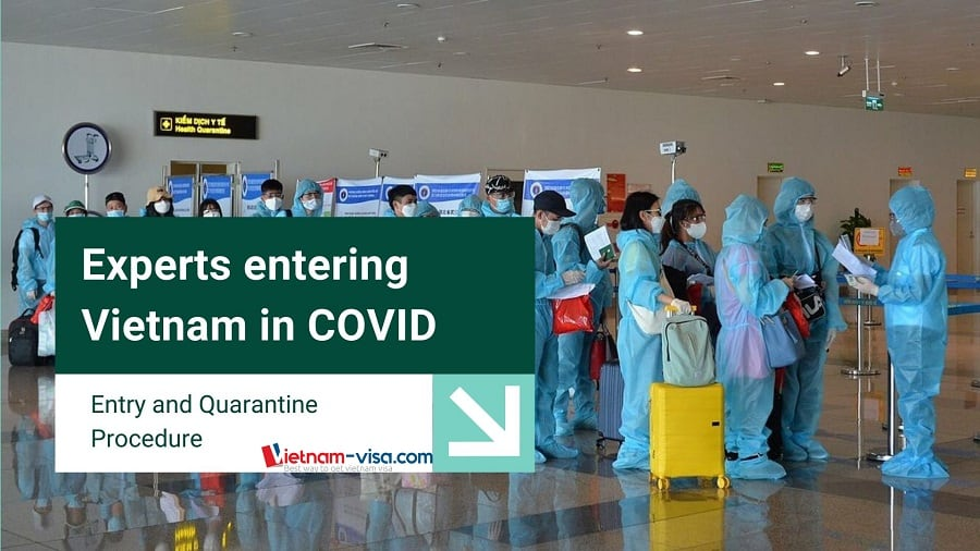 Experts entering Vietnam in COVID - Entry and quarantine procedure